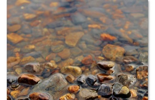 Pebbles In Water1