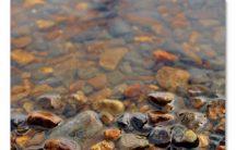 Pebbles In Water1
